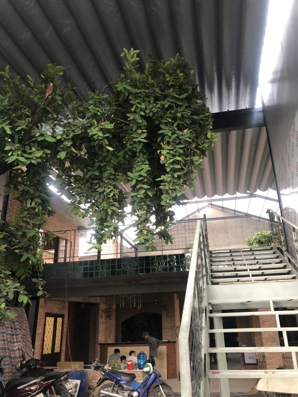 Thiết kế mái hiên di động cho quán cafe và nhà ở